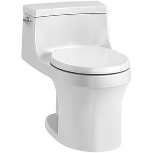 Kohler San Souci Best Flushing Toilet